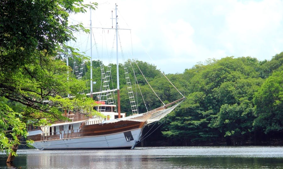 Memorable 4-Day/3-Night Cruise to Anavilhanas Archipelago aboard 102' Sailing Schooner!