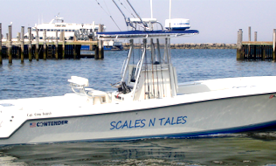 Contender Fishing Charter In Highlands
