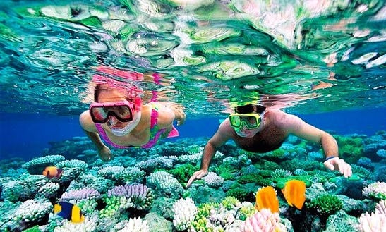 Exciting Snorkeling Adventure In Ionian Sea With Khristos