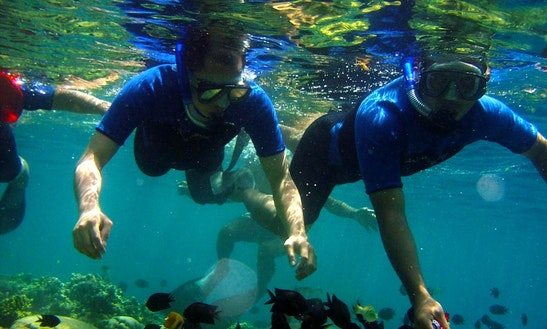 Snorkeling Tours In The Coral Rich Dive Sites In Bentota, Sri Lanka