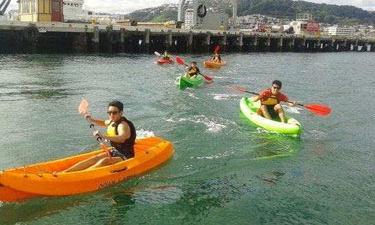 Single Kayak Hire & Courses In Auckland
