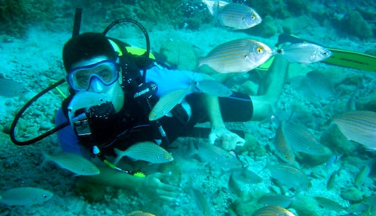 Daily Diving Trips In Muğla