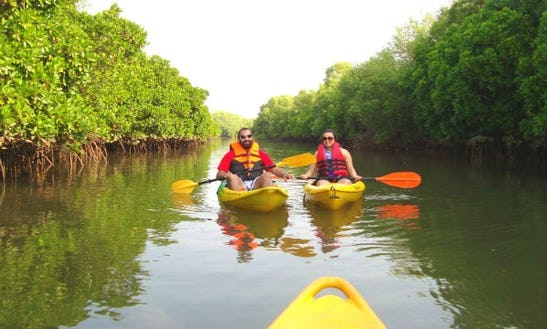 Single Kayaking Trips In Cavelossim