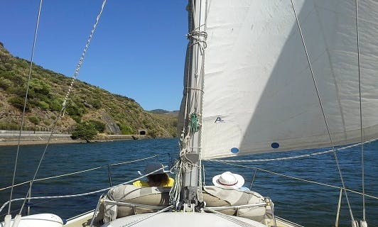 Private cruise in the heart of Douro Valley