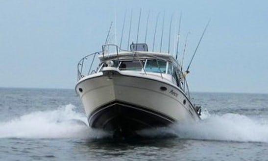 Inboard Propulsion Rental In Sterling