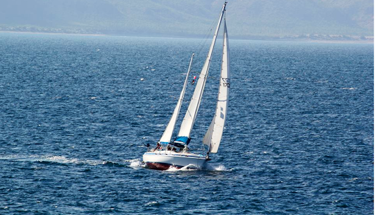 Sailing Charter On 41' Morgan Ketch In La Paz Baja, Mexico