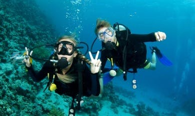 Scuba Diving In Pineleng