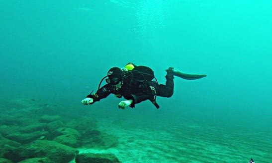 Diving Trips And Courses In Puerto Calero