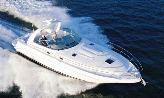Searay 455 Motor Yacht Charter In Larnaca