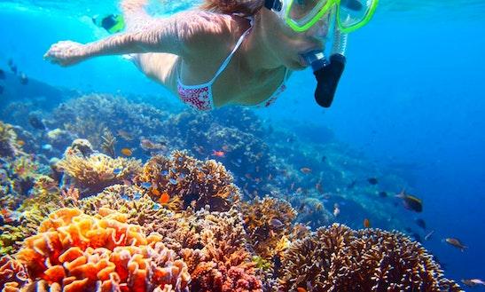 Snorkeling In Llafranc