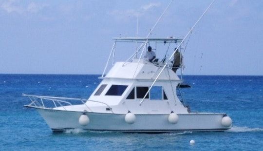 Deep Sea Fishing Charter On 34 Feet Yacht In Cozumel, Mexico