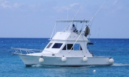 Deep Sea Fishing Charter On 34 Feet Yacht In Cozumel, Mexico