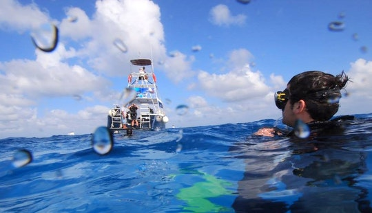 Fun And Safe Scuba Diving Trips In Cozumel, Mexico