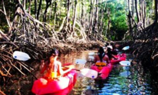 Try Our Kayak Rentals & Tours In Puntarenas, Costa Rica