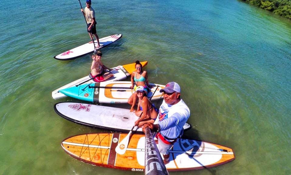 Paddleboard Rental & Tours in Sarasota, Florida