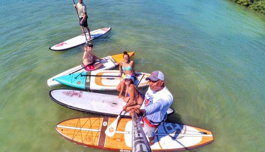 Paddleboard Rental & Tours In Sarasota, Florida