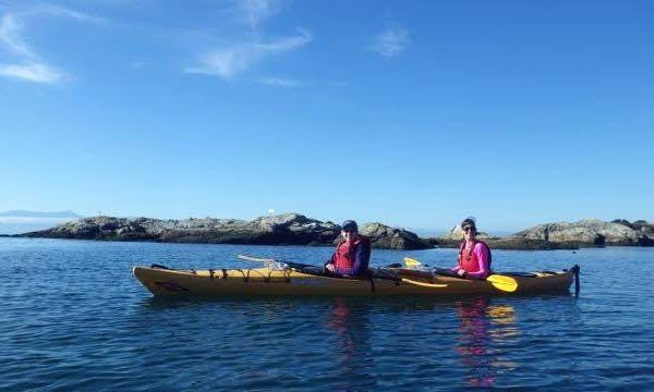17' Tandem Sit On Top Kayak Rental in Victoria, Canada