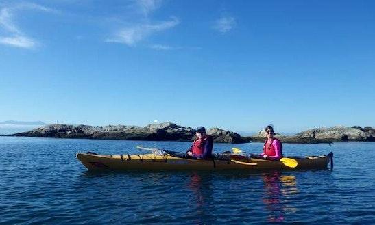 17' Tandem Sit On Top Kayak Rental In Victoria, Canada
