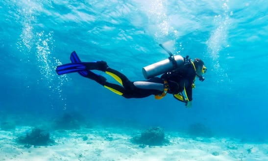 Diving Trips And Courses In Piran