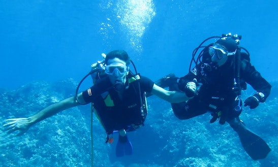 Funniest Diving Activity In Monte Argentario, Italy