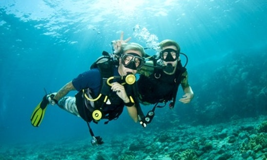 Diving Trips And Courses In Ko Samui