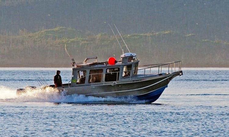 34' Cuddy Cabin Charter in Homer, Alaska