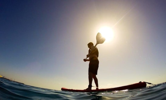 Paddleboard & Surf Rental & Lessons In San Diego, California