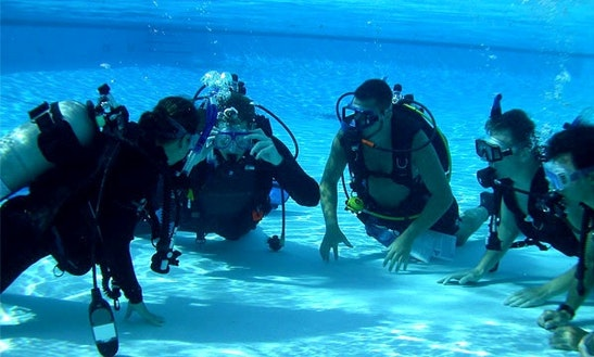 Diving Trips In Willemstad, Curacao