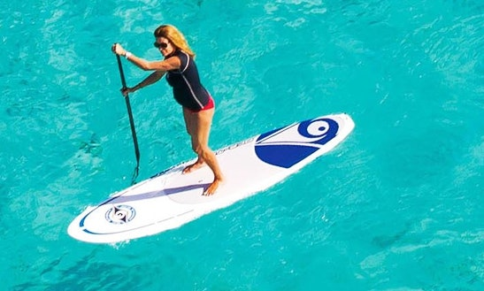 Paddleboard & Surf Rental In Honolulu, Hawaii
