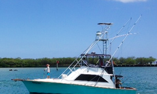 42' Sport Fisherman Fishing Charters In Honolulu, Hawaii