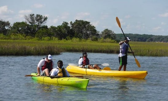 Book This 3-hour Guided Kayak Eco Tours In Jacksonville, Florida