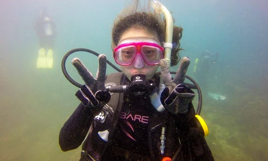 Diving Lesson In Xinyi District