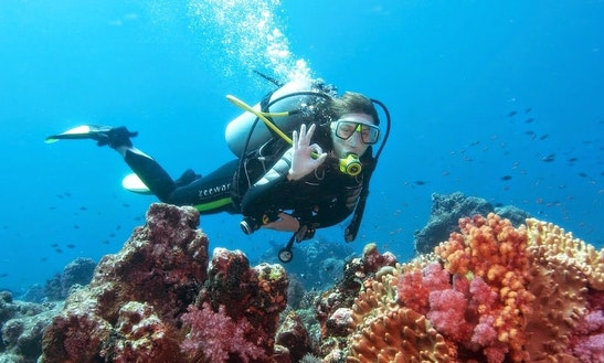Scuba Diving Trips In Antalya