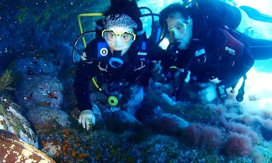 Diving Trips In El Grao De Castellón