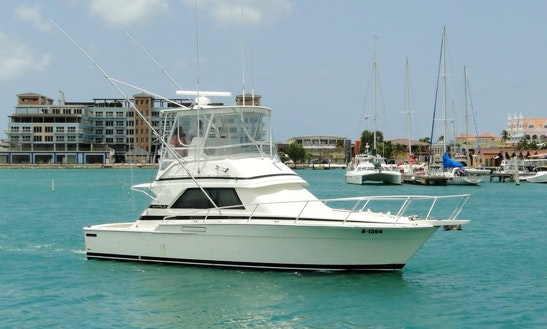 Fishing Charter On 37ft