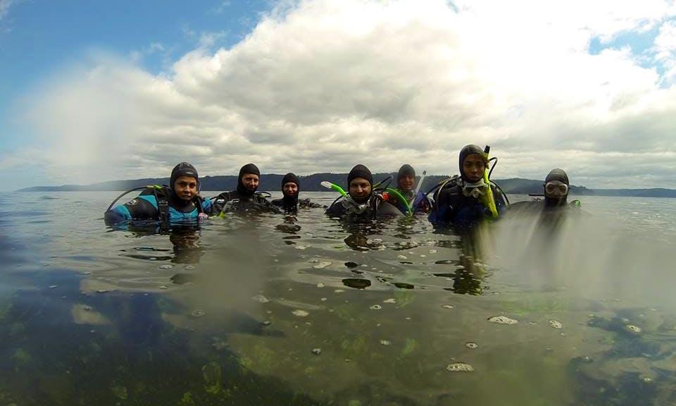 Open Water Scuba Diving In Keizer