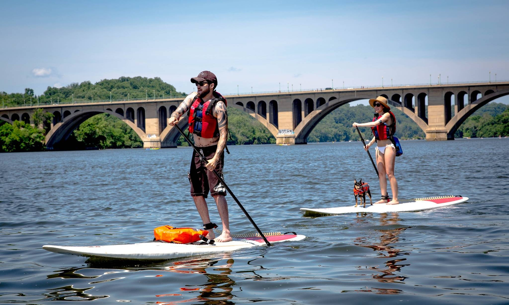 Stand Up Paddleboarding in Alexandria