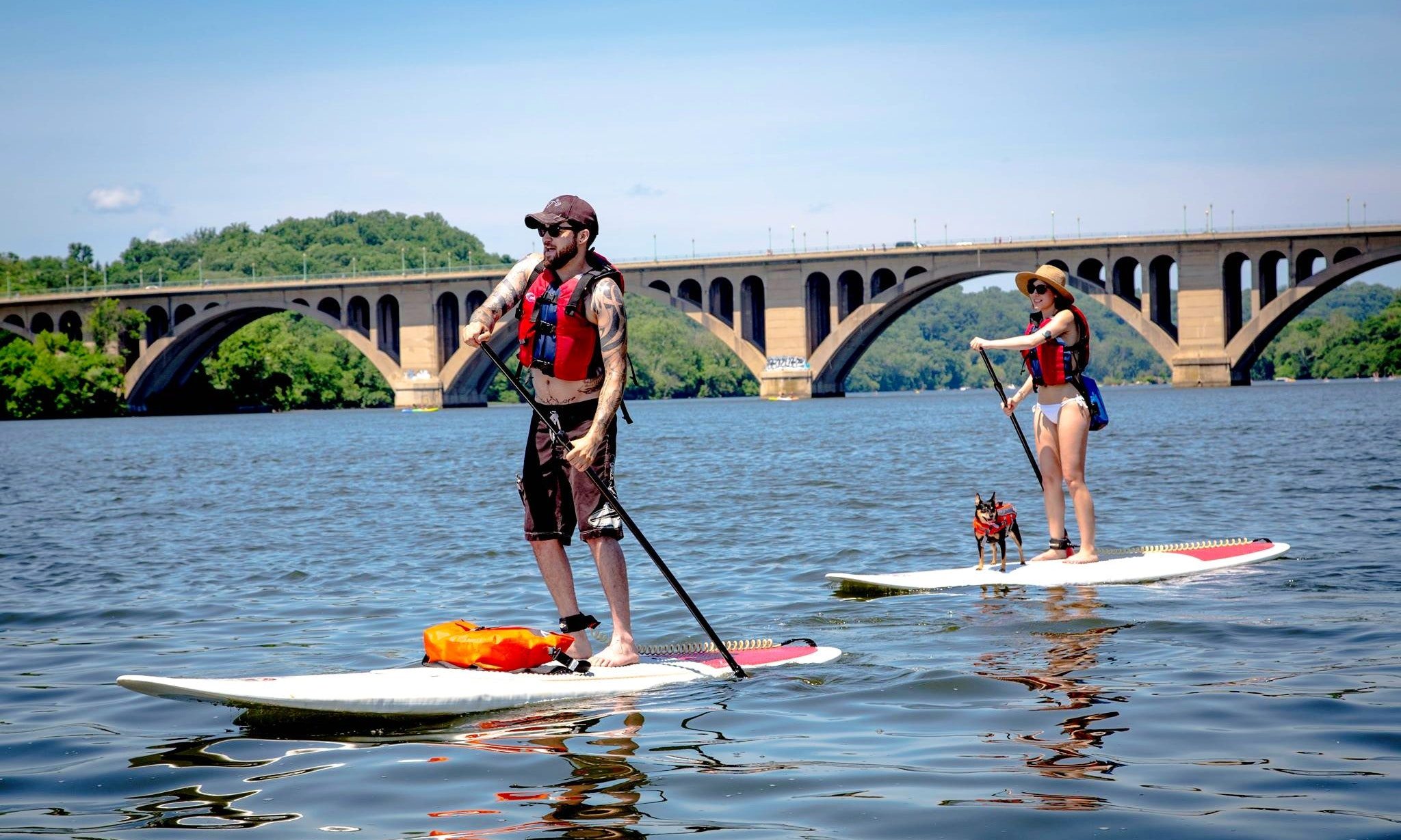 Stand Up Paddleboards >> Stand Up Paddleboarding In Alexandria Getmyboat