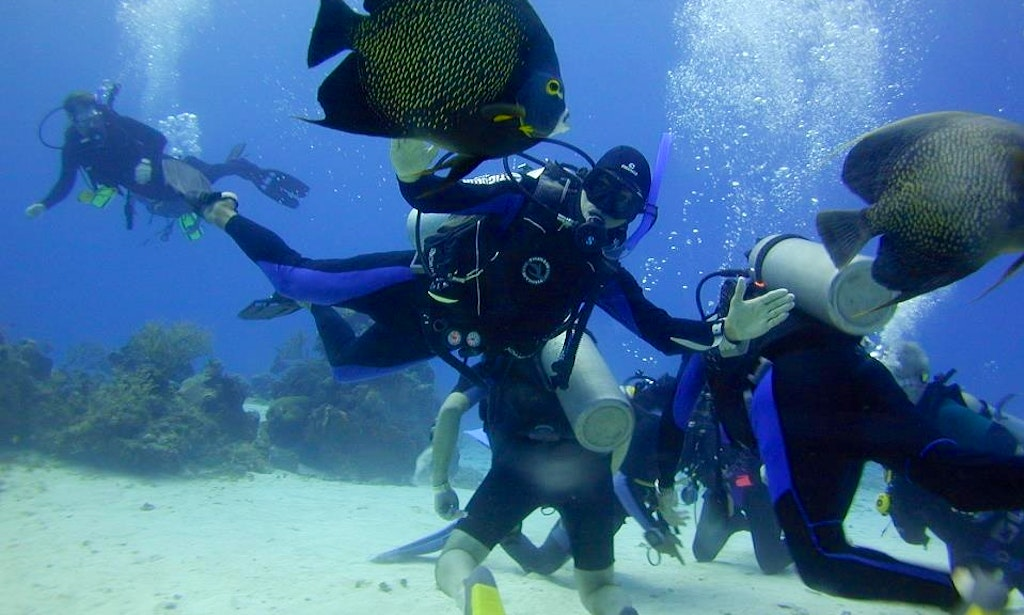 Diving Trips In New York New York Getmyboat
