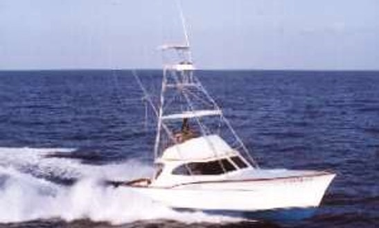 Fishing Charters On 39'
