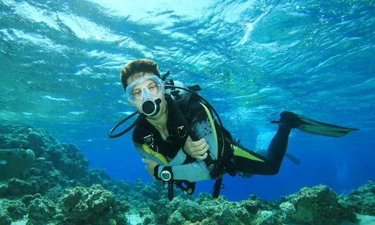 Diving Trips & Courses In Berlin