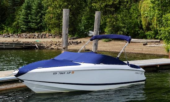 Cobalt Boat Rental In Coeur D'alene