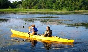 Explore Lake Neusiedl in Rust with a Tandem Kayak!
