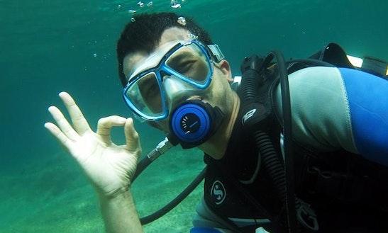 Diving Trips & Courses In Alsancak Girne