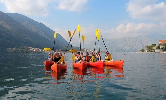 Amazing Kayak Tour With The Local Guides In Kotor, Montenegro