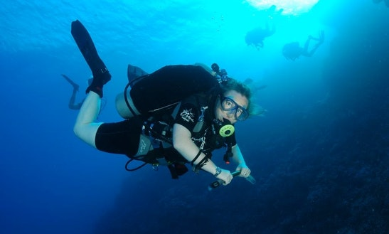 Learn To Scuba Diving In San Diego