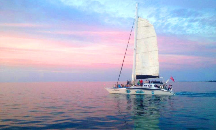 Catamaran Sailing & Snorkeling Tour in Sandys