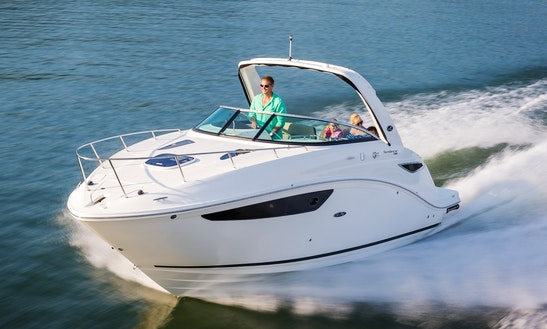 27' Sea Ray Sundancer Motor Yacht Rental In Newport Beach, California