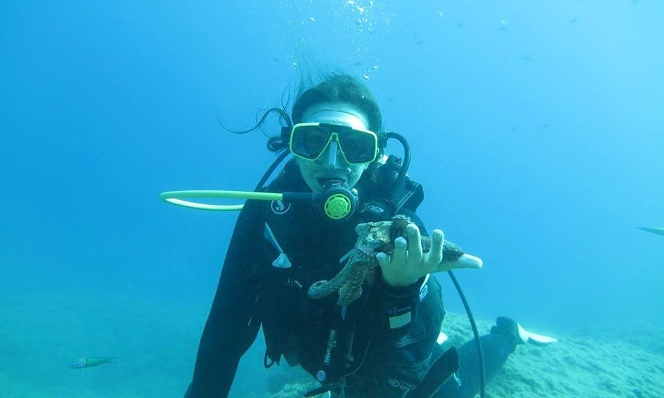 Scuba Diving Trips and Courses in Antalya