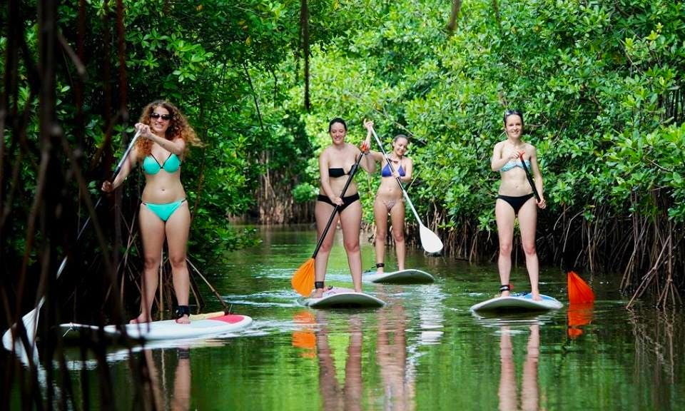 Paddleboard Rental in Les Trois-llets, Martinique